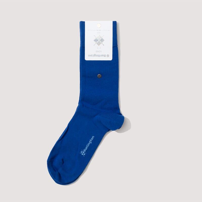 <Lord Socks - Bright Blue (806)